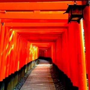 【デリヘル体験談】京都の風俗店で熱く盛り上がれ!新人嬢のすすめ