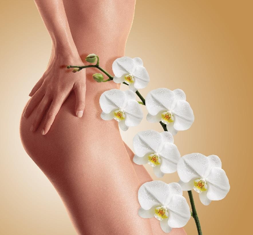 裸の女性と一輪の花